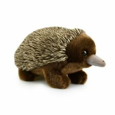 Lil Friends Echidna Plush Soft Toy 18cm Stuffed Animal by Korimco