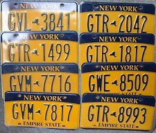 One  NEW  YORK  2013   Empire  State License Plate --- Nice condition  -