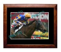 FIELDS OF OMAGH 2003 COX PLATE WIN LARGE A3 PHOTO
