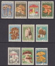 Roumanie 1958 Champignons (10 V) - UM/neuf sans charnière