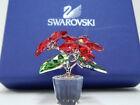 Swarovski Red Poinsettias 905209 Retired - Christmas Flower