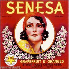 Harlingen Texas Rio Grande Senesa Orange Citrus Fruit Crate Label Art Print