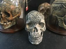 Carved Real Human Skull Replica Special Forces SF Army Memento mori Zane Wylie