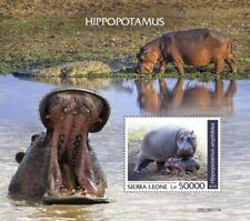 Sierra Leone 2019 Hippopotamus on Stamps Stamp Souvenir Sheet SRL190717b