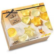 House Of Crafts Soap Making Starter Craft Kit Lemon Scented Gift Set SC020