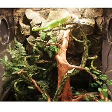 Reptile Vivarium Flexible Bendable Jungle Vine Pet Gecko Climb Habitat Decor