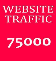 75.000 🚀 Webseite Besucher 🚀 Echte Besucher Traffic SEO Webprojekt Ranking PR
