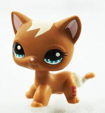 2'' Brown Cat Short Hair  Kids Toys Blue Eyes Littlest Pet Shop LPS #1170