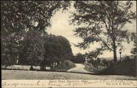 Sandwich Cape Cod MA Cotuit Road c1910 Postcard
