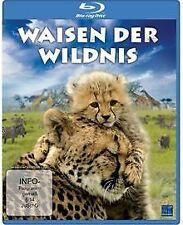 Waisen der Wildnis [Blu-ray] | DVD | Zustand sehr gut