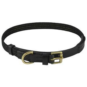 Black English Bridle Leather Dog Collar Gold Stranded Webbing and Polished Brass