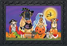 """Trick or Treat Dogs Halloween Doormat Cats Jack o'Lantern Indoor Outdoor 18""""x30"""""""