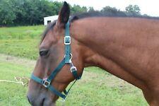 Brand New Nylon Horse Size Halter