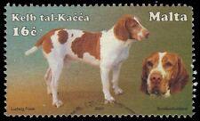 "MALTA 1068 - Native Dog Breeds - Maltese Hunting Dog ""Kelb tal-Kacca"" (pa86018)"
