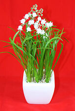 Artificial Lily of the Valley in Ceramic Pot - Wedding Table Decoration