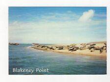 Blakeney Point Norfolk 1997 Postcard 454a