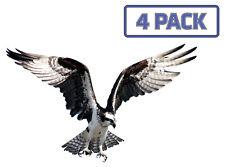 Osprey Eagle Hawk Birds of Prey Sticker Vinyl Decal 1-016