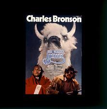 Der weisse Büffel ORIGINAL Kino-Dia / Film-Dia / Diacolor / Charles Bronson
