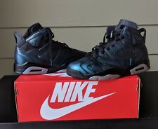 Air Jordan 6 All Star/ Chameleon Size 9.5