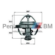 BMW Thermostat 71 Deg E30 E36 E28 E34 E24 E23 E32 11531713041 11531713040