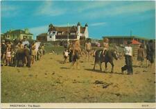 Horse Postcard -Ponies on the beach - Prestwick