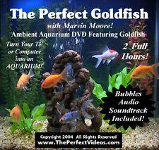 Virtual AQUARIUM DVD Fish Tank Video Real Goldfish with Bubbles Audio Soundtrack