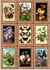 Framed Birds, Flowers & Butterflies ~ Card Making Toppers / Scrapbooking