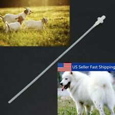 50x Canine Dog Goat Sheep Artificial Insemination reed whelp Catheter Rod Set