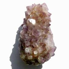 SPIRIT QUARTZ Cactus Crystal  Cluster CC830 Amethyst Ametrine Phantoms
