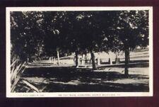 RPPC Tan Track Alexandra Ave MELBOURNE VIC Australia Vintage Photo Postcard