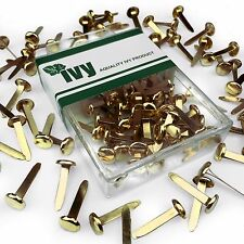 Ivy Stationery - 19mm... LIBRO ELEMENTI DI FISSAGGIO-ROVESCIATO Pins-Confezione da 50 - 8mm HEAD