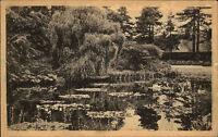 Kingston on Thames London AK 1926 Royal Botanic Gardens Botanischer Garten Pond