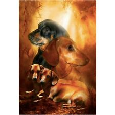 Diamond-Painting Five D Four Dachshund Dogs Leisure Kits Art Embroidery