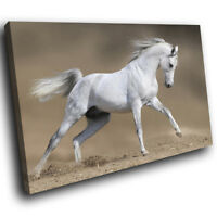 White Horse Gallop Brown Funky Animal Canvas Wall Art Large Picture Prints