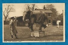 """1933 PC YOUNG INDIAN ELEPHANT """"ROSIE"""" AT CHESSINGTON ZOOLOGICAL GARDENS, SURREY"""