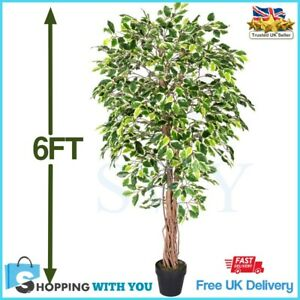 Tall Artificial Ficus Tree 6 Ft Variegated Tropical Plant Decor Indoor Outdoor