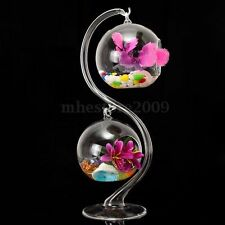 2pc Hanging Glass Flowers Plant Vase Stand Holder Terrarium Container +S bracket