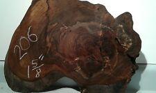 Pacific Black Walnut, live edge, stump root slab table top burl, art,taxidermy