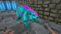 Ark Survival Evolved Xbox One PVE Cotton Candy Beaver castoroide