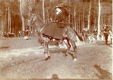 Miss Mercier, départ pour la chasse Vintage albumen print Tirage albuminé  1