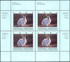 1997 Northwest Territories Arctic Hare by S Hines
