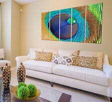 Canvas Prints Peacock Feather Wall Decor Art Prints On Canvas Framed Wall Art