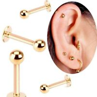 """THIN 18G 1/4"""" 5/16"""" GOLD BALL STEEL LABRET EAR TRAGUS RING BODY JEWELRY"""