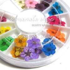 Wheel 36pcs 12 COLOR Dried Dry Flower 3D Nail Art Decoration UV Acrylic Design