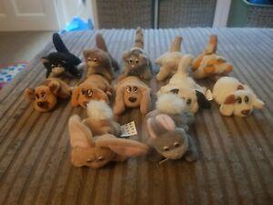 X13 NewBorn Pound Puppies / Pound Purrries Galoob 90s Vintage *Read Description*