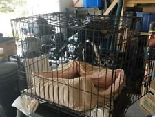 Cat cage for travel to vet and back