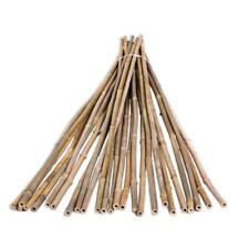 Natural Bamboo Poles Fencing Plant Support Protection Cages 25 Pack 1/2 in x 6ft
