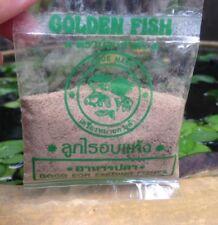 BUY 4 GET 1 FREE Nano Daphnia Fish food for all for tropical fish / larva