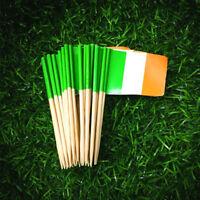 FJ- KQ_ 100Pcs Irish Flag Clover Print Cupcake Topper Food Toothpicks Party Deco