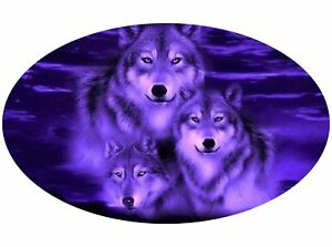 Motor home Caravan Camper Horse box Wolves Wolf Stickers Decal Graphic mh16